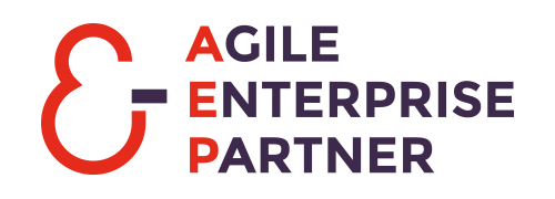 Agile Enterprise Partner