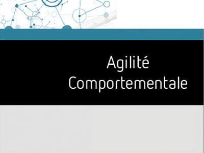 Formation Agilite Comportementale